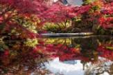 taikoen-garden
